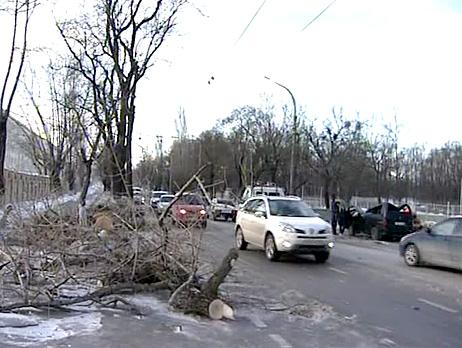Сильный ветер может стать причиной ЧС